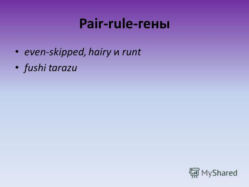 Pair-rule-гены even-skipped, hairy и runt fushi tarazu