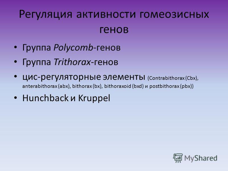 Регуляция активности гомеозисных генов Группа Polycomb-генов Группа Trithorax-генов цис-регуляторные элементы (Сontrabithorax (Сbx), anterabithorax (abx), bithorax (bx), bithoraxoid (bxd) и postbithorax (pbx)) Hunchback и Kruppel