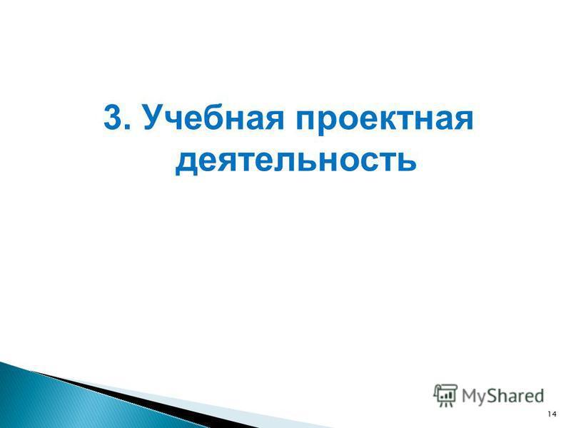 14 3. Учебная проектная деятельность