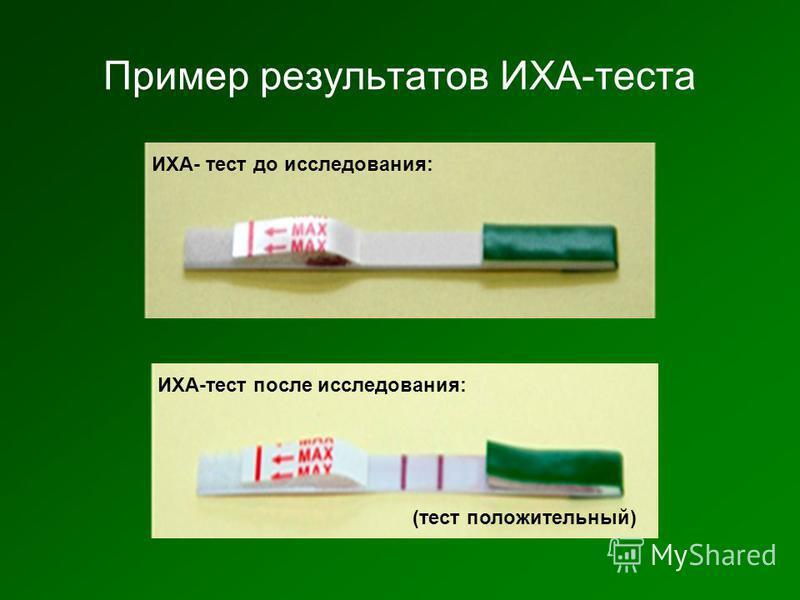 Пример результатов ИХА-теста ИХА- тест до исследования: ИХА-тест после исследования: (тест положительный)