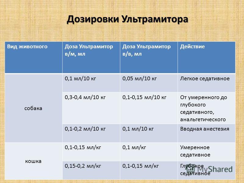 Вид животного Доза Ультрамитор в/м, мл Доза Ультрамитор в/в, мл Действие собака 0,1 мл/10 кг 0,05 мл/10 кг Легкое седативное 0,3-0,4 мл/10 кг 0,1-0,15 мл/10 кг От умеренного до глубокого седативного, анальгетического 0,1-0,2 мл/10 кг 0,1 мл/10 кг Вво