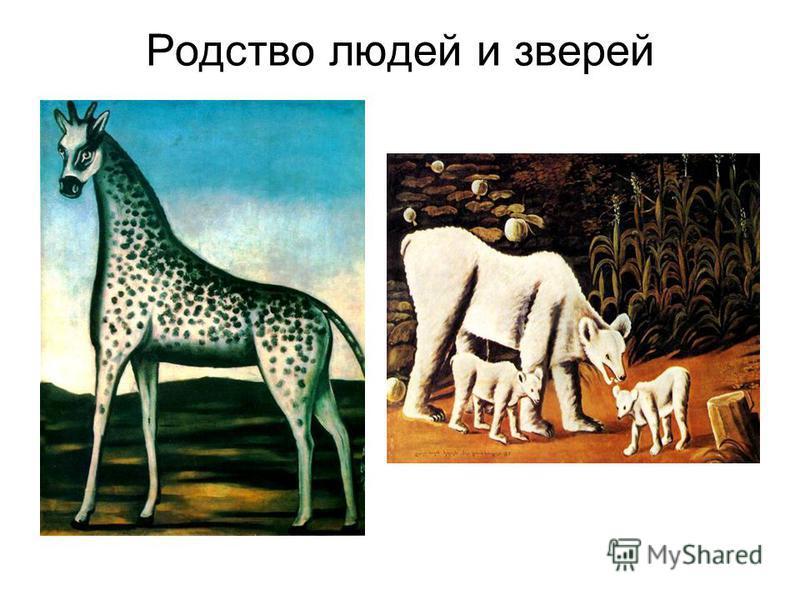 Родство людей и зверей