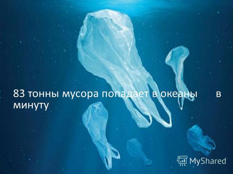 83 тонны мусора попадает в океаны в минуту