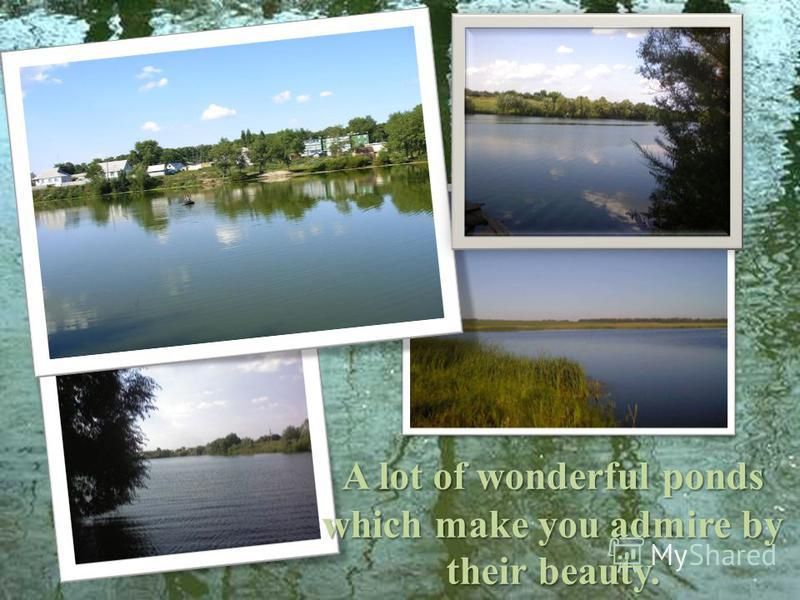 A lot of wonderful ponds which make you admire by their beauty.