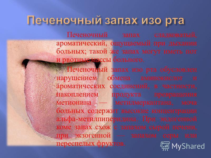 Вирусный гепатит в. этиология