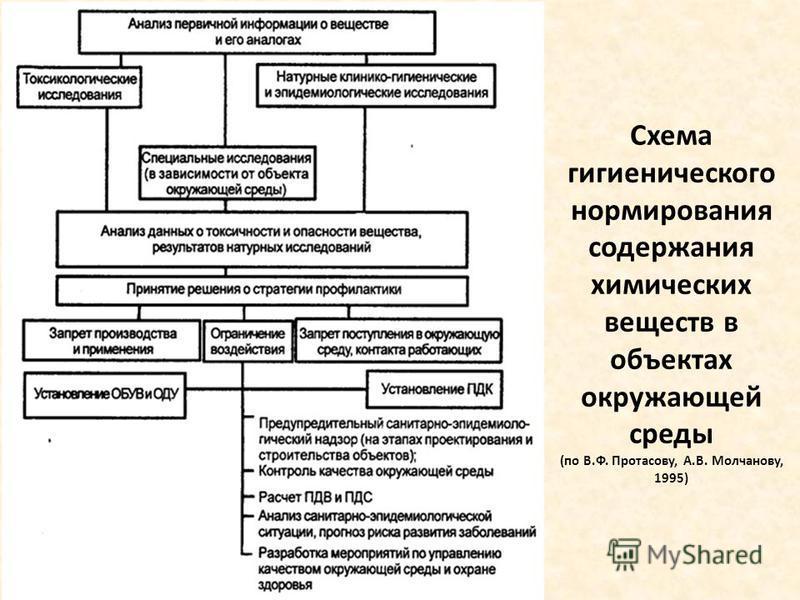 Схема гигиенического нормирования содержания химических веществ в объектах окружающей среды (по В.Ф. Протасову, А.В. Молчанову, 1995)