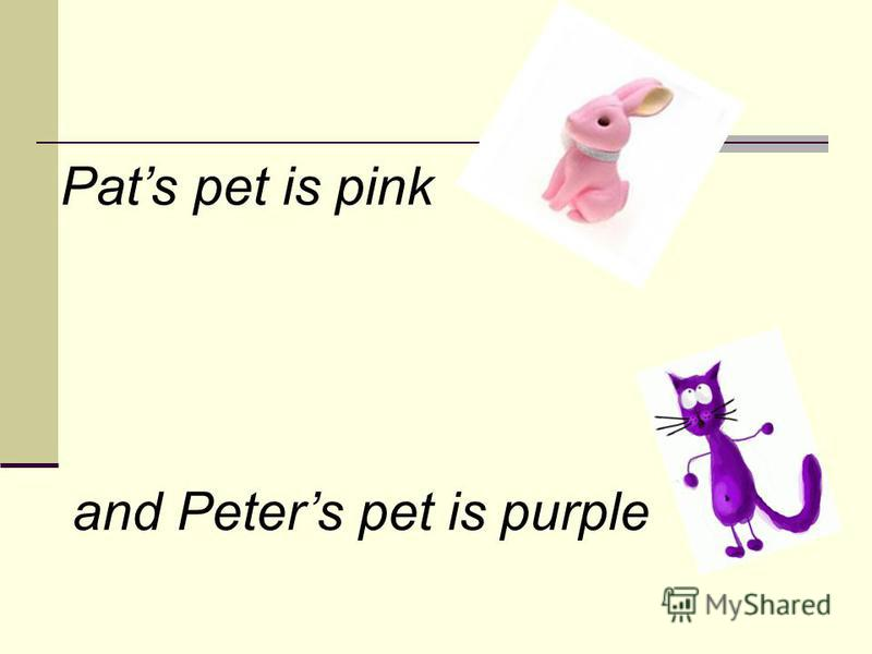 Pats pet is pink and Peters pet is purple
