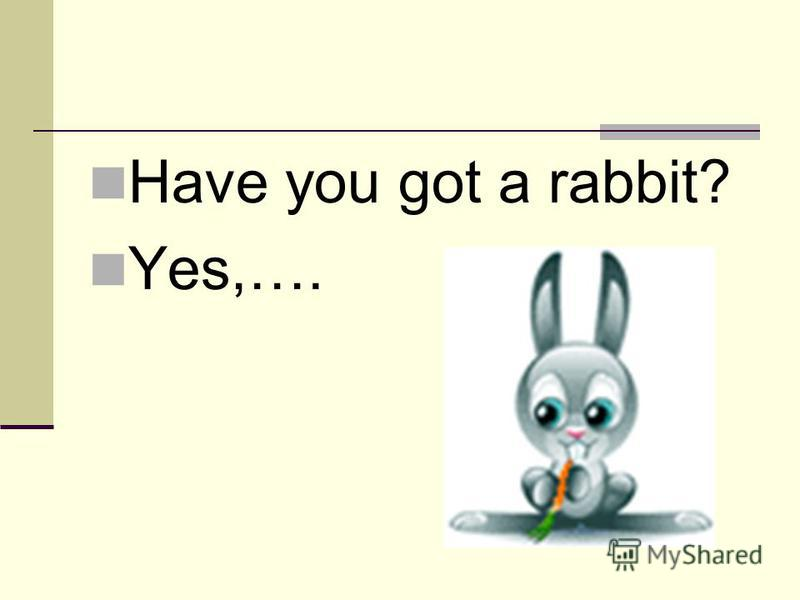 Have you got a rabbit? Yes,….