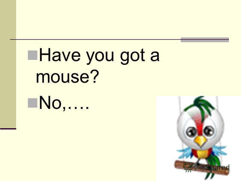 Have you got a mouse? No,….