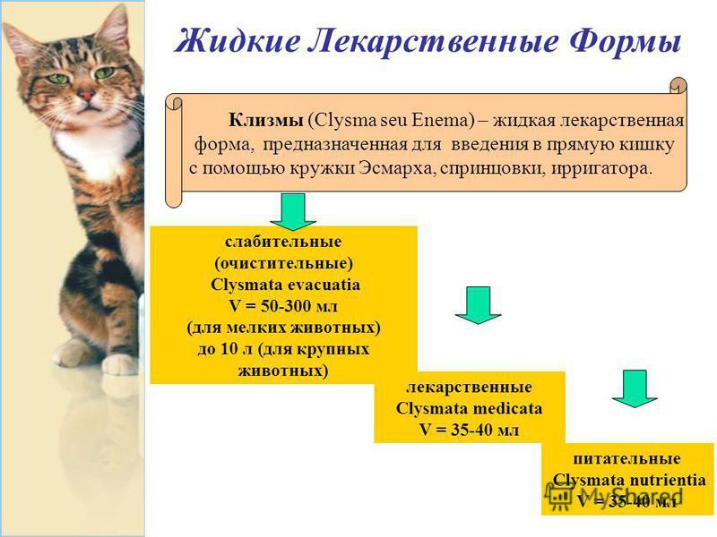 Жидкие Лекарственные Формы Клизмы (Clysma seu Enema) – жидкая лекарственная форма, предназначенная для введения в прямую кишку с помощью кружки Эсмарха, спринцовки, ирригатора. слабительные (очистительные) Clysmata evacuatia V = 50-300 мл (для мелких