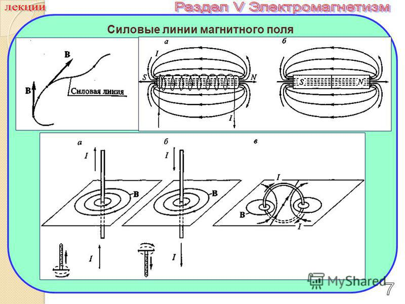 Силовые линии магнитного поля За линию магнитной индукции принимают такую линию, касательная к которой в каждой точке совпадает с направлением вектором магнитной индукции в этой точке