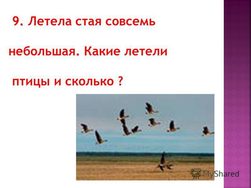9. Летела стая совсемь небольшая. Какие летели птицы и сколько ?