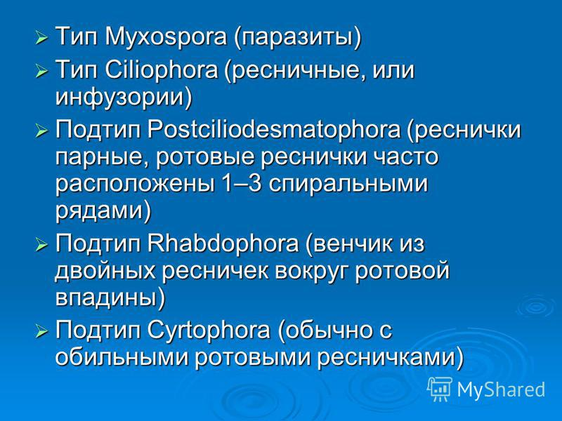 Тип Myxospora (паразиты) Тип Myxospora (паразиты) Тип Ciliophora (ресничные, или инфузории) Тип Ciliophora (ресничные, или инфузории) Подтип Postciliodesmatophora (реснички парные, ротовые реснички часто расположены 1–3 спиральными рядами) Подтип Pos