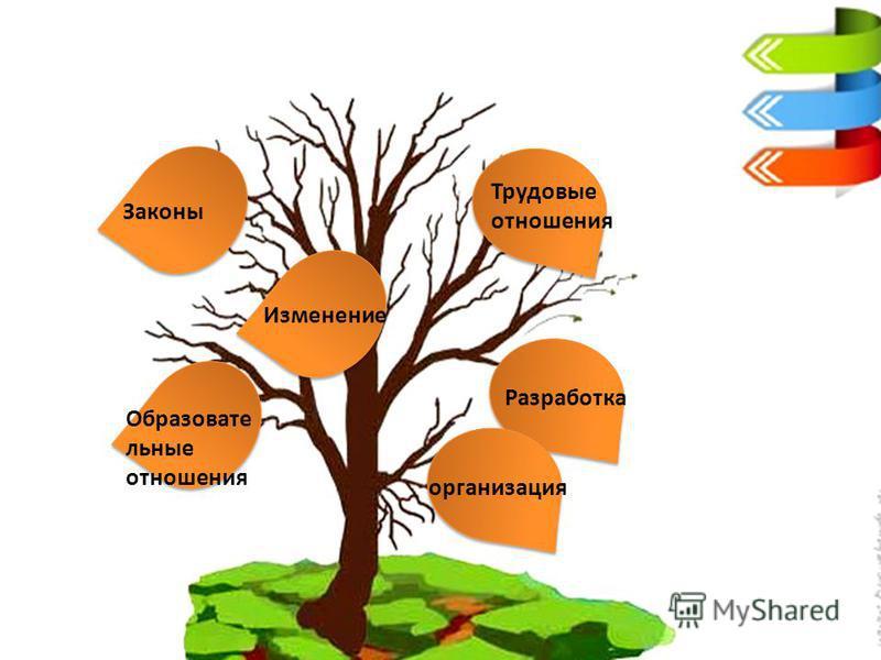Законы Трудовые отношения Образовате льные отношения Изменение Разработка организация