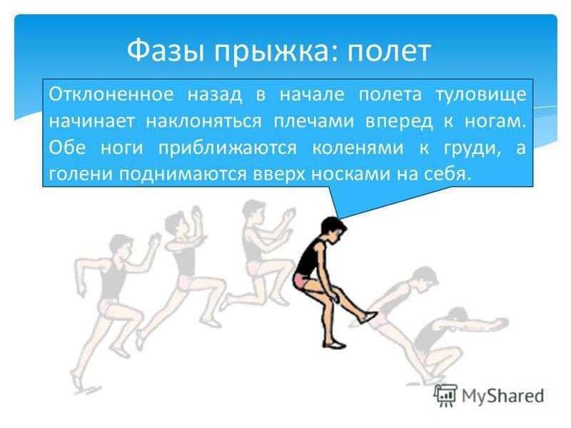 Отклоненное назад в начале полета туловище начинает наклоняться плечами вперед к ногам. Обе ноги приближаются коленями к груди, а голени поднимаются вверх носками на себя. Фазы прыжка: полет