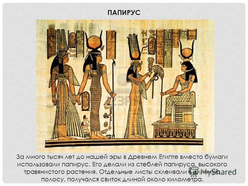 За много тысяч лет до нашей эры в Древнем Египте вместо бумаги использовали папирус. Его делали из стеблей папируса, высокого травянистого растения. Отдельные листы склеивали в длинную полосу, получался свиток длиной около километра. ПАПИРУС