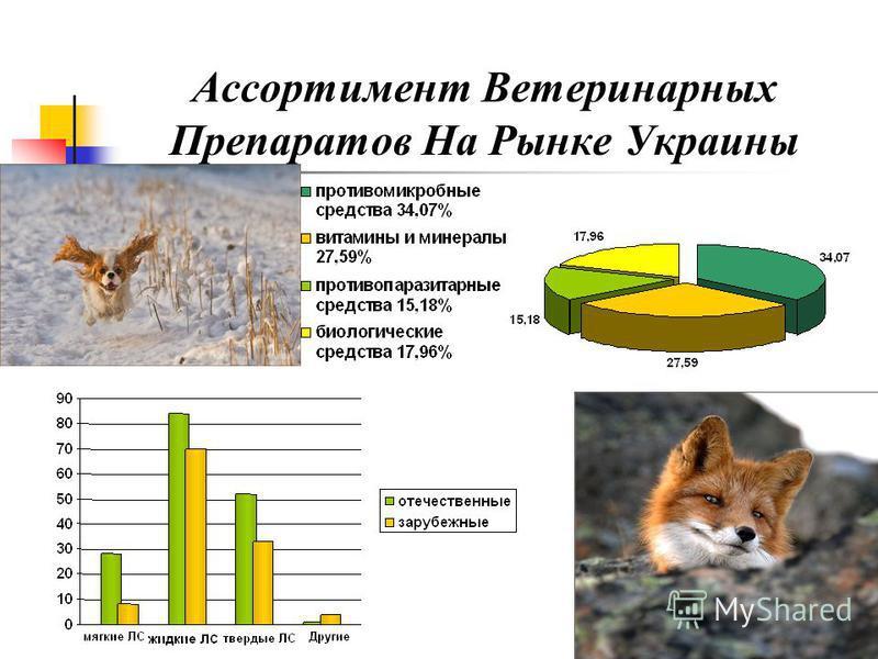 Ассортимент Ветеринарных Препаратов На Рынке Украины