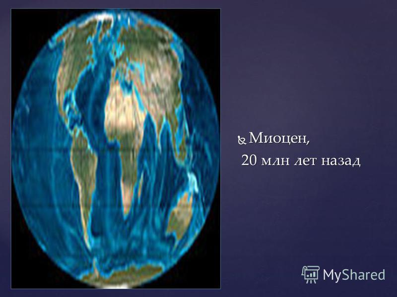 Миоцен, Миоцен, 20 млн лет назад 20 млн лет назад