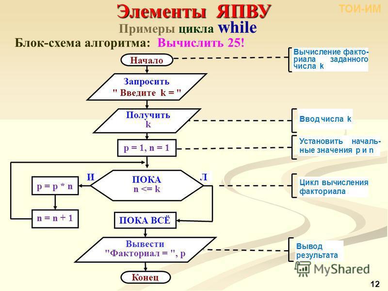 Примеры цикла while Блок-схема алгоритма: Вычислить 25! Элементы ЯПВУ ТОИ-ИМ 12 Начало Конец Запросить