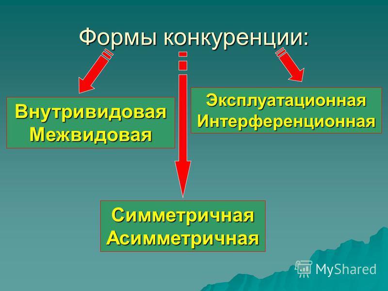 Формы конкуренции: Внутривидовая Межвидовая Симметричная Асимметричная Эксплуатационная Интерференционная