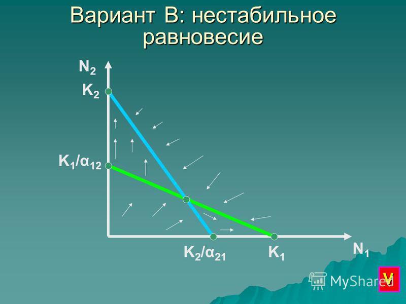Вариант В: нестабильное равновесие N2N2 N1N1 K1K1 K 1 /α 12 K2K2 K2/α21K2/α21 V
