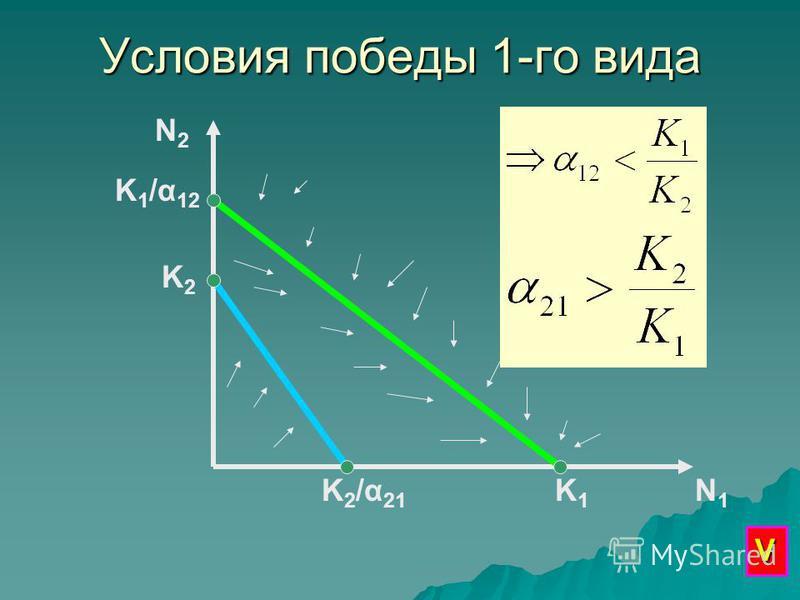 Условия победы 1-го вида N2N2 N1N1 K1K1 K 1 /α 12 K2K2 K2/α21K2/α21 V