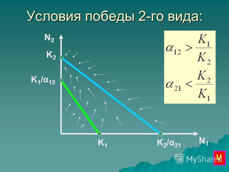 Условия победы 2-го вида: N2N2 N1N1 K1K1 K 1 /α 12 K2K2 K2/α21K2/α21 V