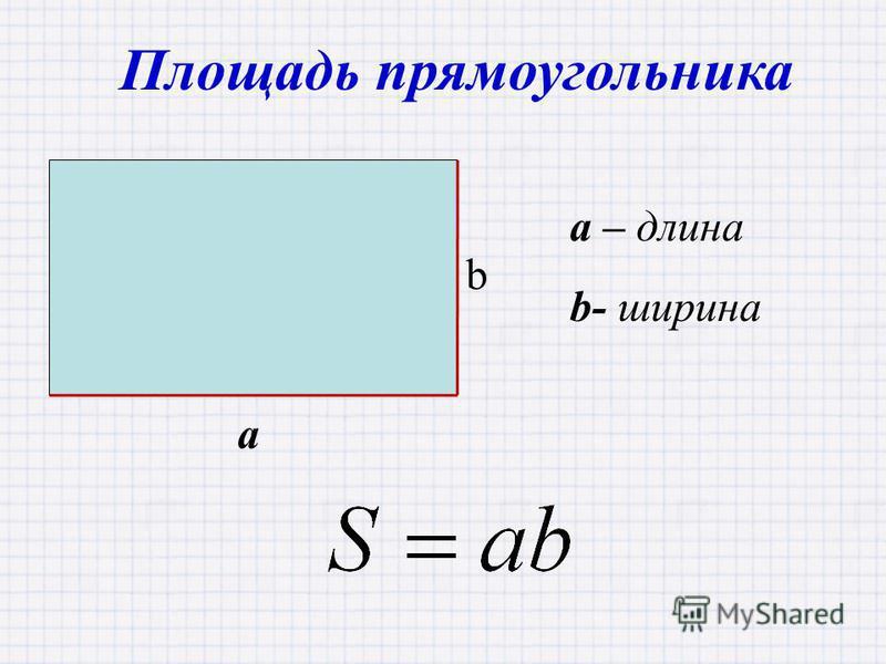 Площадь прямоугольника a – длина b- ширина a b