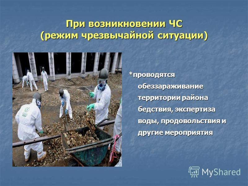 При возникновении ЧС (режим чрезвычайной ситуации) *проводятся обеззараживание территории района бедствия, экспертиза воды, продовольствия и другие мероприятия