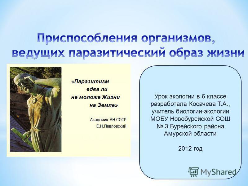 Урок экологии в 6 классе разработала Косачёва Т.А., учитель биологии-экологии МОБУ Новобурейской СОШ 3 Бурейского района Амурской области 2012 год