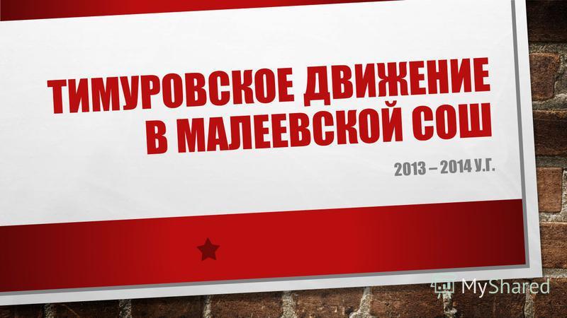 ТИМУРОВСКОЕ ДВИЖЕНИЕ В МАЛЕЕВСКОЙ СОШ 2013 – 2014 У.Г.