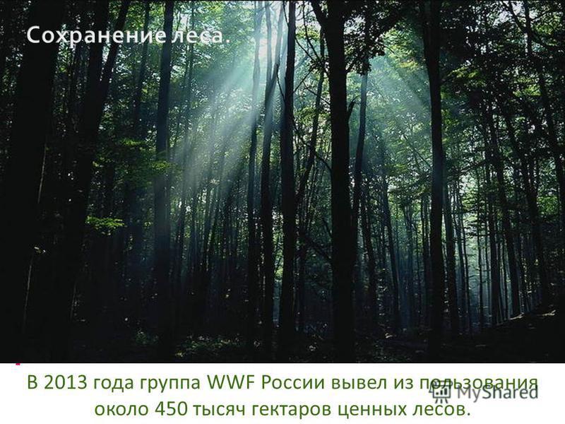 В 2013 года группа WWF России вывел из пользования около 450 тысяч гектаров ценных лесов.