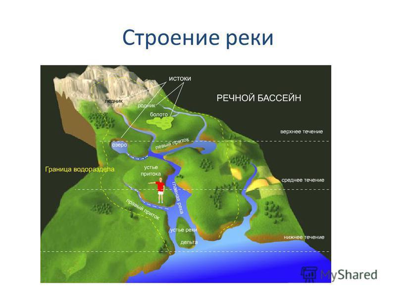 Строение реки