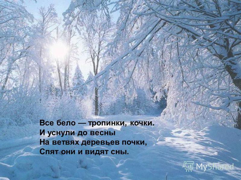 Все бело тропинки, кочки. И уснули до весны На ветвях деревьев почки, Спят они и видят сны.