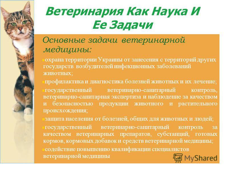 Ветеринария Как Наука И Ее Задачи Основные задачи ветеринарной медицины: охрана территории Украины от занесения с территорий других государств возбудителей инфекционных заболеваний животных; профилактика и диагностика болезней животных и их лечение;