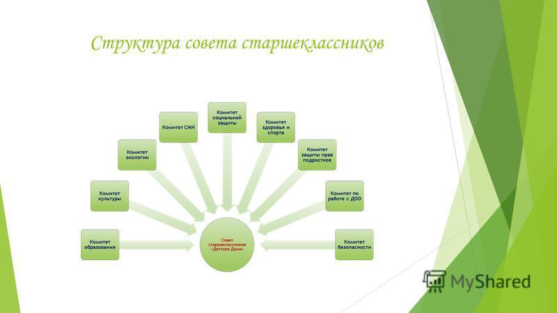 Структура совета старшеклассников