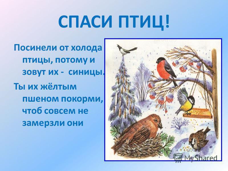 СПАСИ ПТИЦ! Посинели от холода птицы, потому и зовут их - синицы. Ты их жёлтым пшеном покорми, чтоб совсем не замерзли они