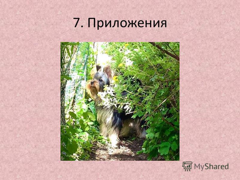 7. Приложения