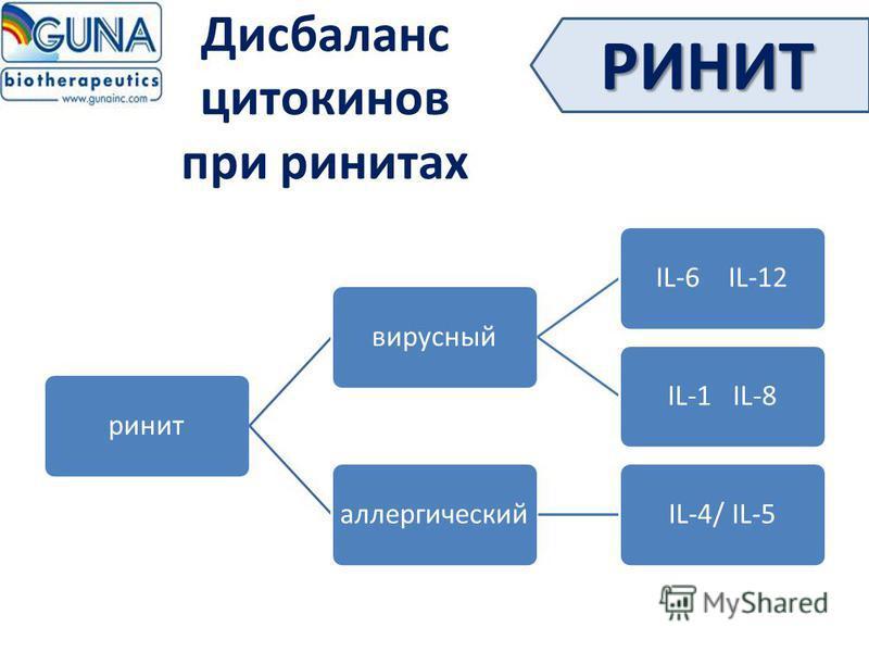 Дисбаланс цитокинов при ринитах ринитвирусныйIL-6 IL-12IL-1 IL-8 аллергическийIL-4/ IL-5 РИНИТ