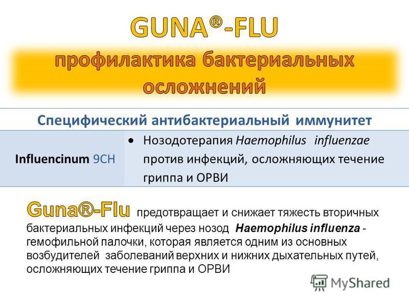 Специфический антибактериальный иммунитет Influencinum 9CH Нозодотерапия Haemophilus influenzae против инфекций, осложняющих течение гриппа и ОРВИ
