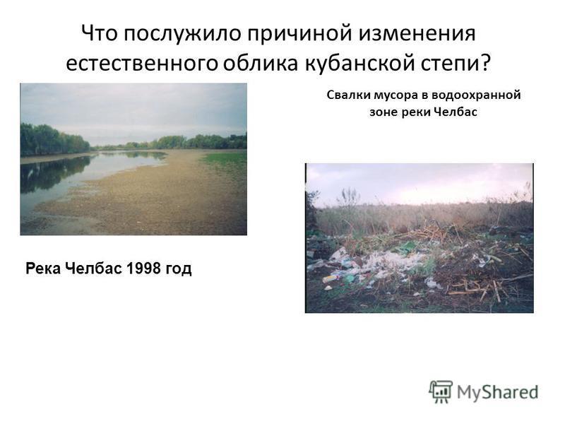 Река Челбас 1998 год Свалки мусора в водоохранной зоне реки Челбас Что послужило причиной изменения естественного облика кубанской степи?