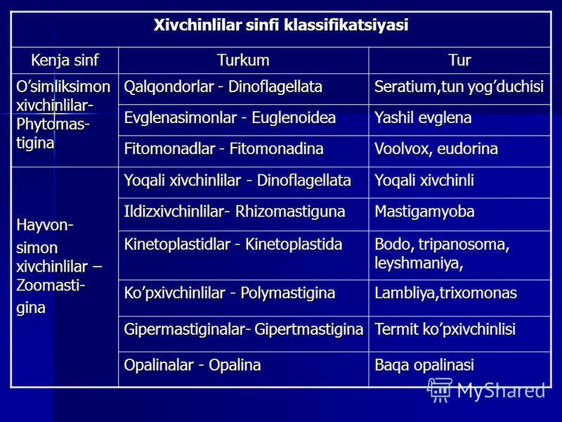 Xivchinlilar sinfi klassifikatsiyasi Kenja sinf TurkumTur Osimliksimon xivchinlilar- Phytomas- tigina Qalqondorlar - Dinoflagellata Seratium,tun yogduchisi Evglenasimonlar - Euglenoidea Yashil evglena Fitomonadlar - Fitomonadina Voolvox, eudorina Hay