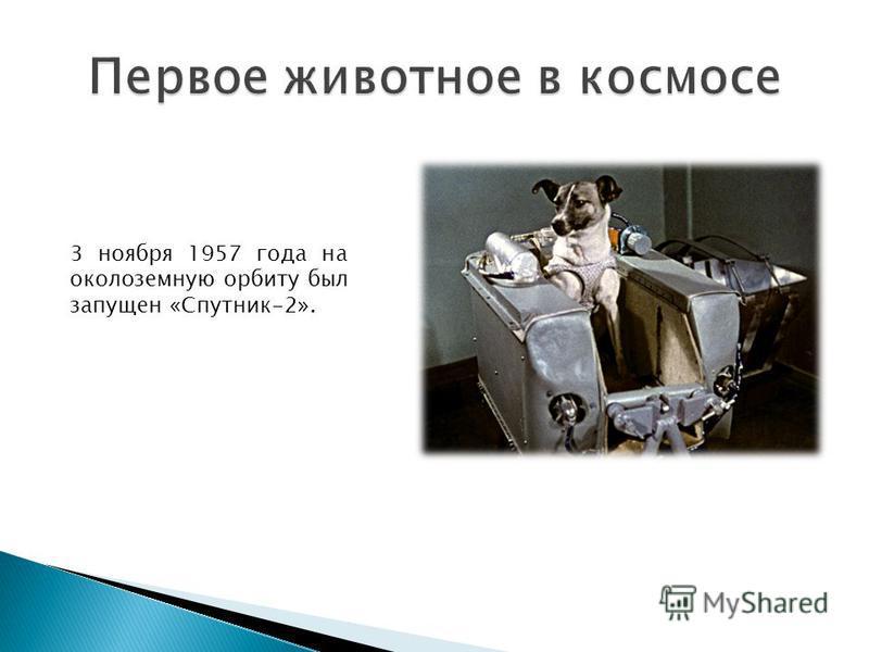 3 ноября 1957 года на околоземную орбиту был запущен «Спутник-2».