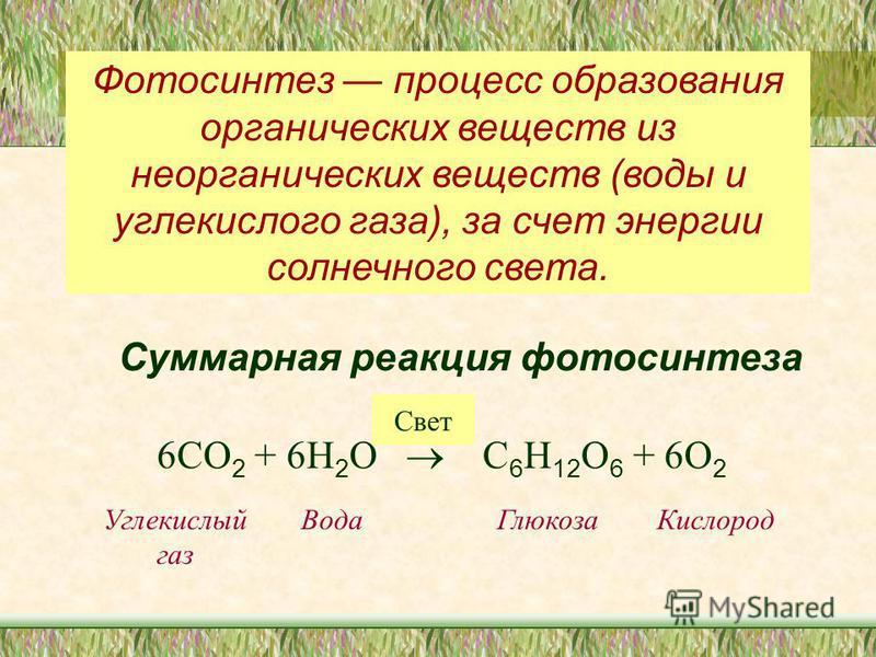 Фотосинтез процесс образования органических веществ из неорганических веществ (воды и углекислого газа), за счет энергии солнечного света. Суммарная реакция фотосинтеза 6СО 2 + 6Н 2 О С 6 Н 12 О 6 + 6О 2 Свет Углекислый газ Вода ГлюкозаКислород