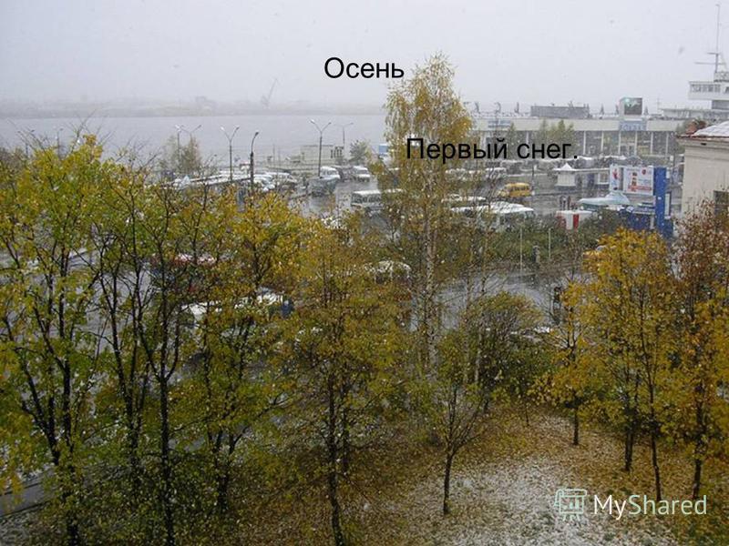 Осень Первый снег.