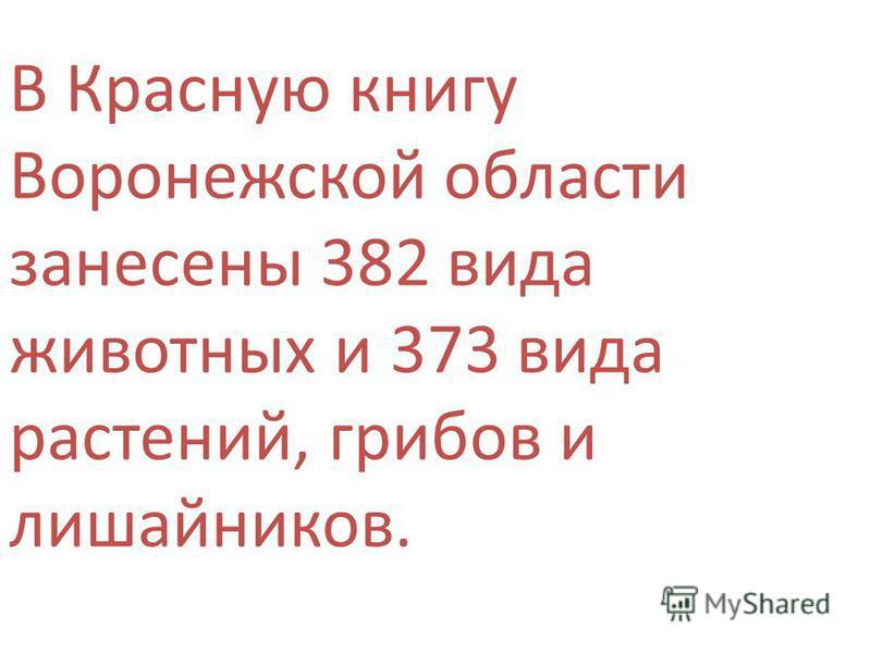 В Красную книгу Воронежской области занесены 382 вида животных и 373 вида растений, грибов и лишайников.
