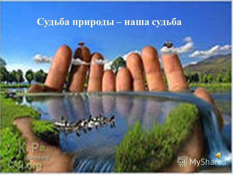 Судьба природы – наша судьба