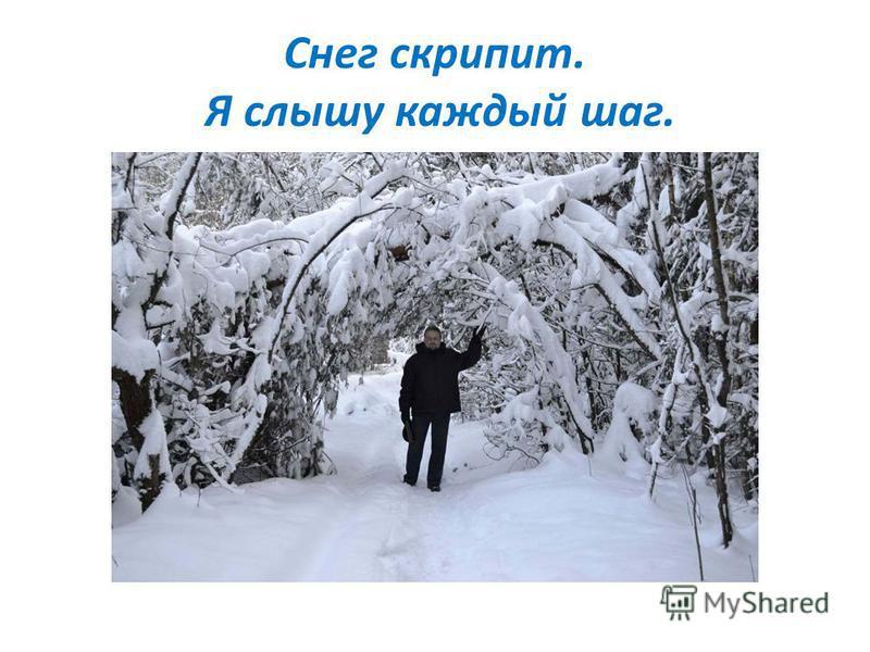Снег скрипит. Я слышу каждый шаг.