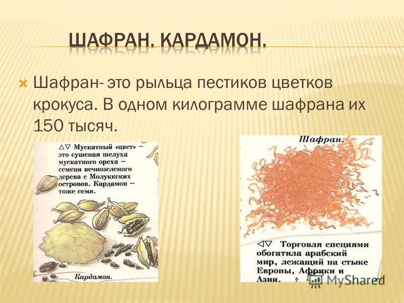 Шафран- это рыльца пестиков цветков крокуса. В одном килограмме шафрана их 150 тысяч.