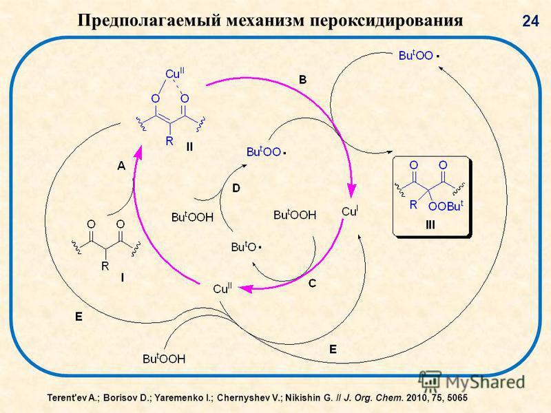 24 Предполагаемый механизм пер оксидирования Terent'ev A.; Borisov D.; Yaremenko I.; Chernyshev V.; Nikishin G. // J. Org. Chem. 2010, 75, 5065